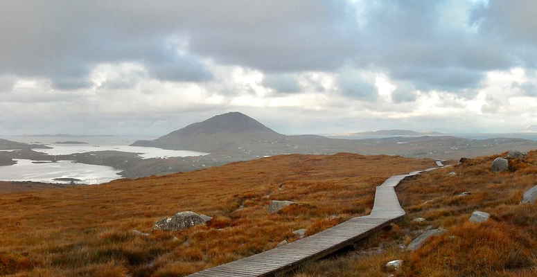 Path with mountain in background